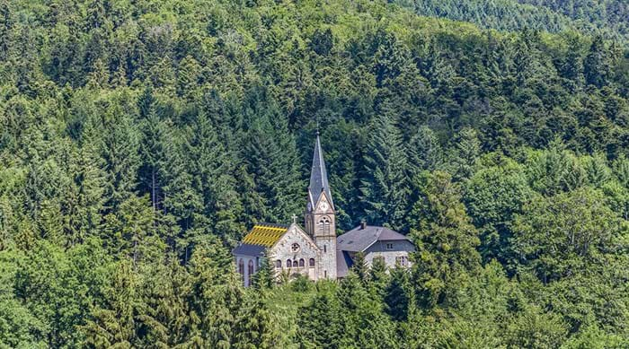 Hiking is the best way to make the most of Le Hohwald's stunning location