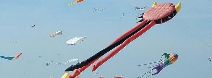 International Kite Festival At Berck|sur|Mer | Eurotunnel Le