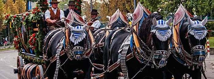 Horses pull the carriages of parades as they make their way to the Oktoberfest tents