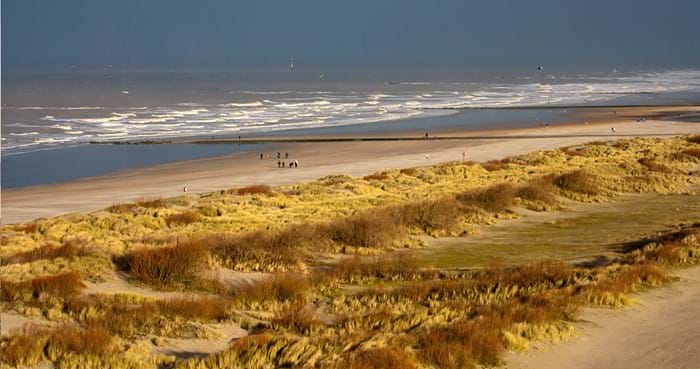 There's plenty of open space for your dog to run free on the beach at Knokke-Heist