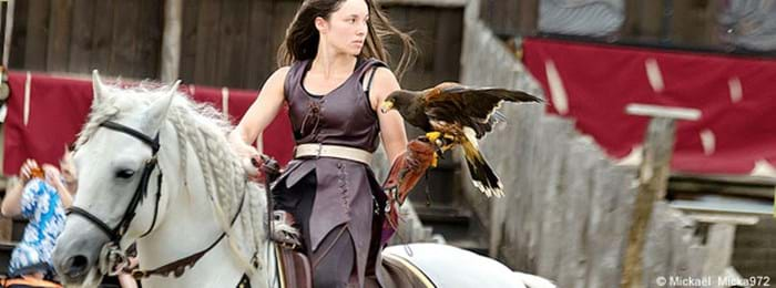 Check out the falconry show at Zoo d'Amnéville