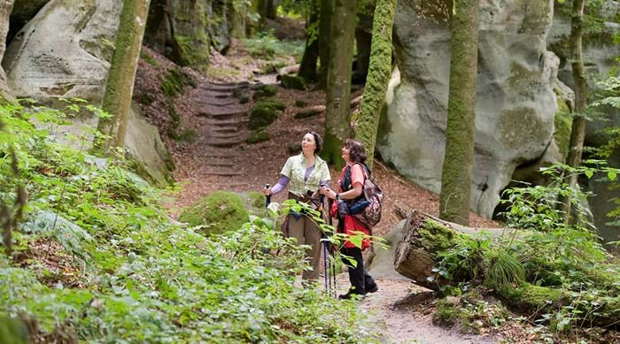 Explore the woodland trails of the Müllerthal region